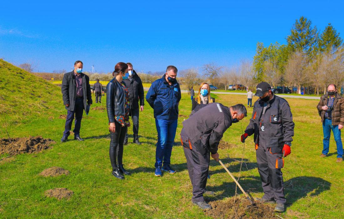На подручју Вршца биће посађено 53 хиљаде стабала